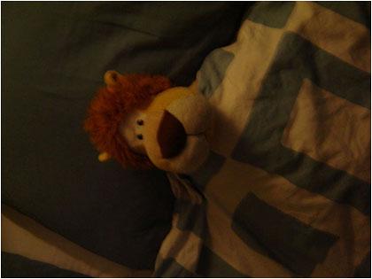 Alex de Leeuw 9