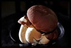 Il Fungo Porcino I.G.P.