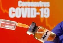vaccine in pregnancy