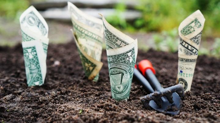 Dollar Cost Averaging (DCA): inversión en piloto automático