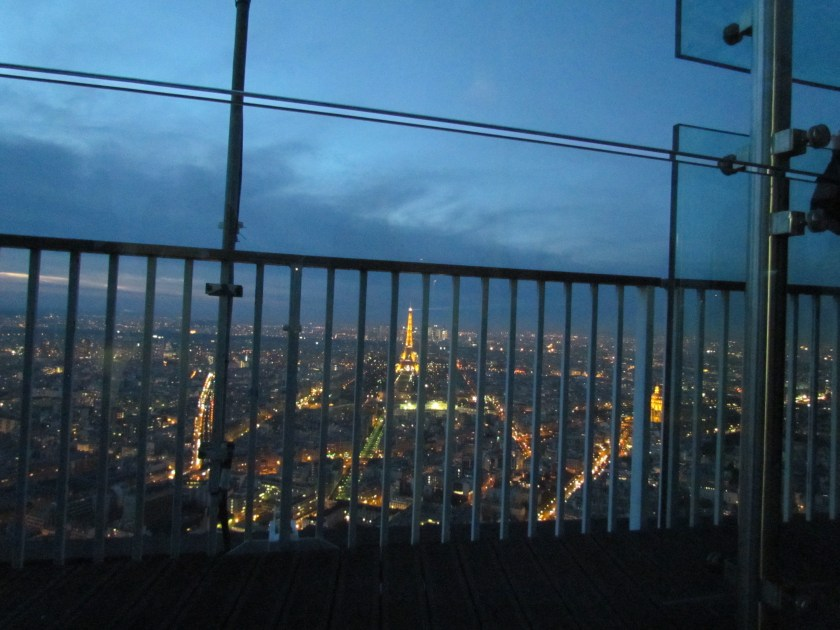 View from Montparnasse Tower