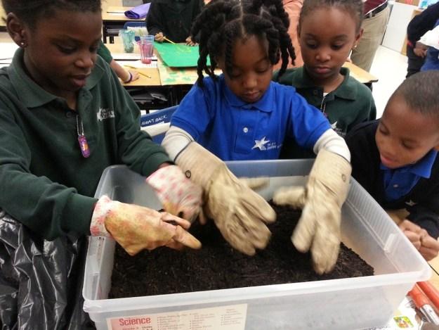 planting smaller