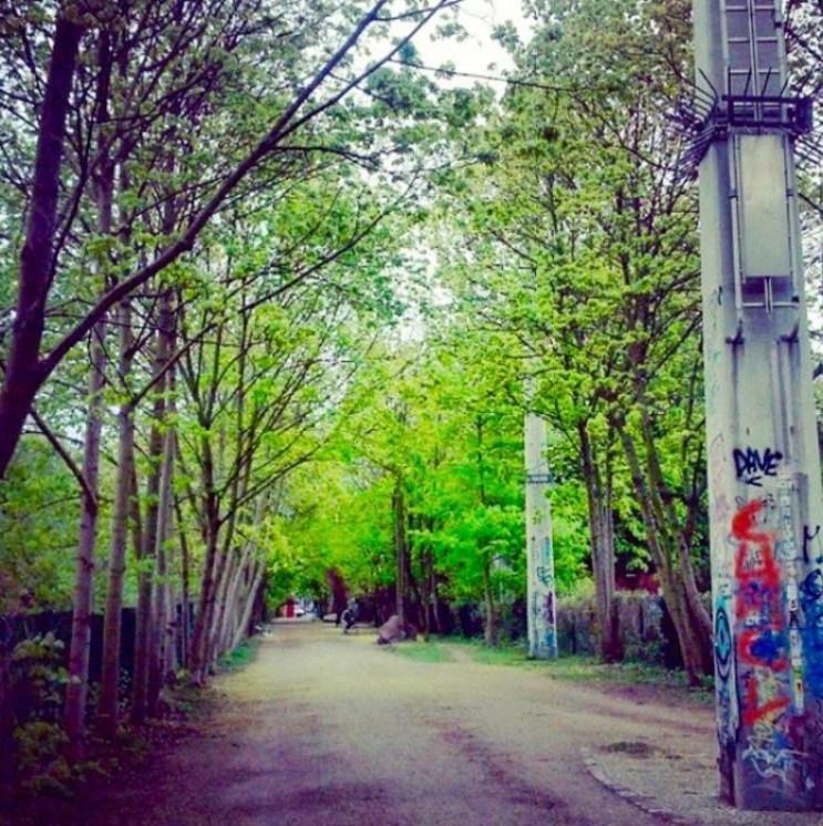 Investir dans un terrain nu en Allemagne