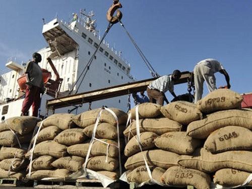 Le Cameroun a exporté 21508 tonnes de cacao  au cours des deux premiers mois de la campagne 2014-2015