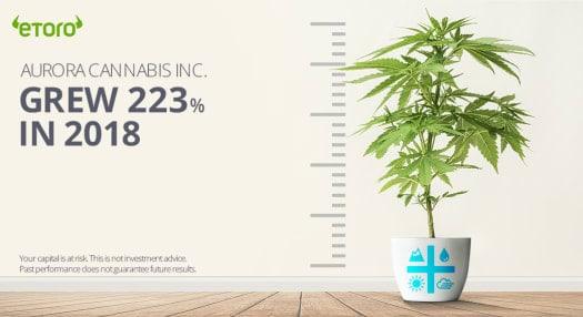 Investire in Azioni Cannabis eToro
