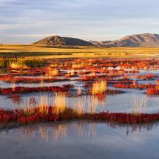 Ubsunur Hollow State Biosphere Reserve - Retirement Fund