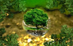 Digital composite image of tree in broken glass ball - Sustainable Investing