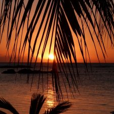 International Realty - Mauritius, Sunset, Palm Trees, Sea