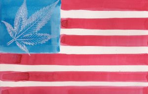 General Cannabis in California
