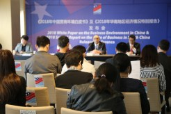 Press Conference of 2018 White Paper on the Business Environment in China and 2018 Special Report on the State of Business in South China (PRNewsfoto/AmCham South China) - Investment Plans