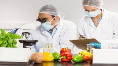 Food safety testing