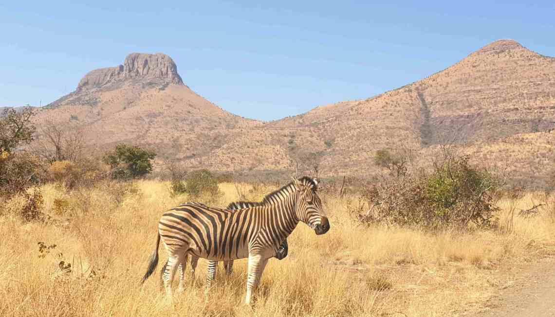 Itinerario in Sudafrica