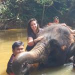 Gli elefanti di Kuala Gandah: un posto speciale