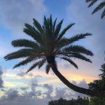 Girovagare per le hawaii, le isole del paradiso
