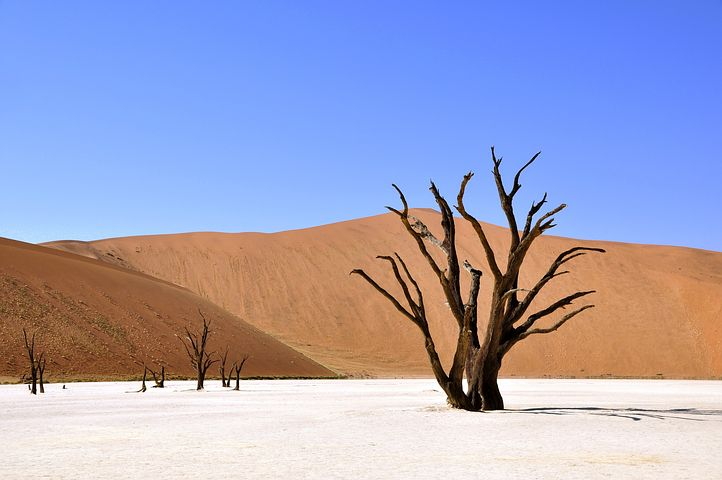 deserti più incredibili del mondo