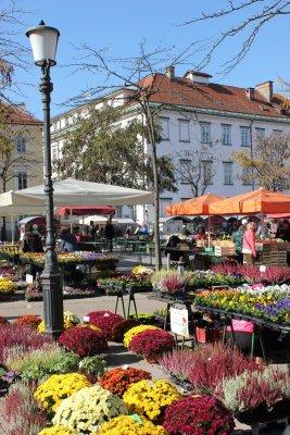 Viaggio a Lubiana, mercato dei fiori in piazza Vodnik (Slovenia)