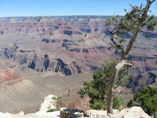 Tour dei Parchi, panorama da Yavapai Point nel Grand Canyon (Arizona, Stati Uniti)