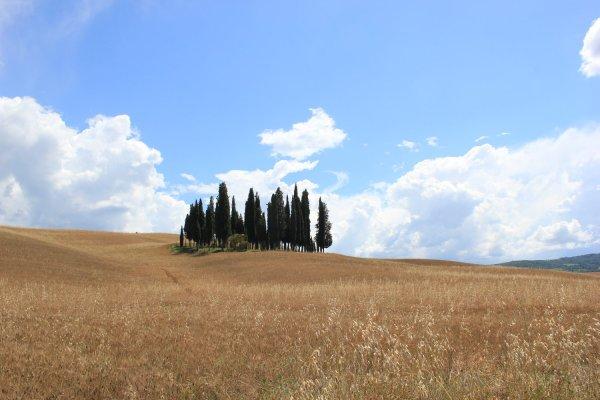 Viaggio in Toscana, il teatrino delle Volpi in Val d'Orcia (Italia)