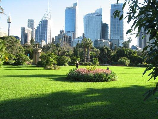 Viaggio a Sydney, i Royal Botanic Gardens (Australia)
