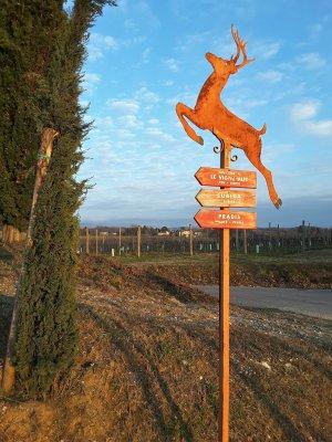 Viaggio in Friuli Venezia Giulia, pannello direzionale lungo il sentiero delle Vigne Alte (Italia)