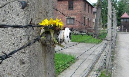 Campo sterminio Auschwitz Oświęcim
