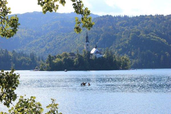 Isola Bled