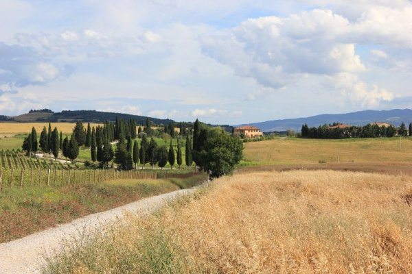 Cosa vedere in Val Orcia
