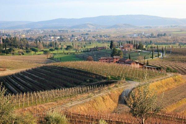 Panorama vigne Collio Goriziano