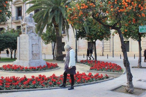 Giardino Carrer Colón Valencia