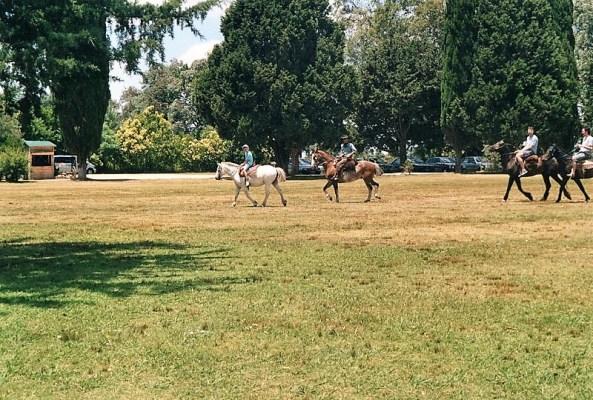 Passeggiata a cavallo Estancia Don Silvano a Capilla del Señor