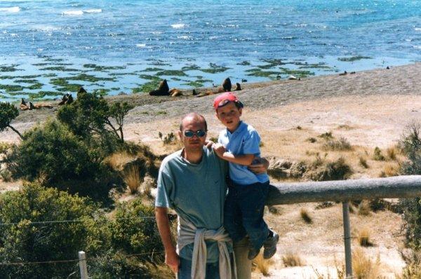 Colonia di leoni marini nella Peninsula de Valdés in Patagonia