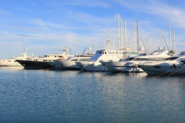 Real Marina Valencia