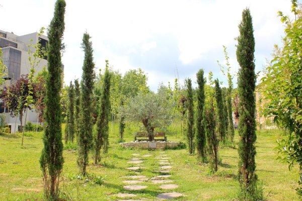 Giardino dell'Amicizia a Tirana