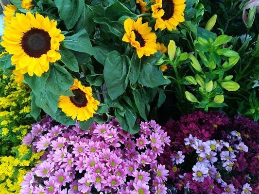 Mercato dei fiori a Tirana