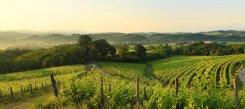 Tramonto sui Colli Orientali del Friuli a Novacuzzo di Prepotto