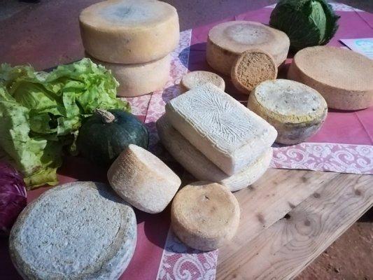 Azienda agricola La Perla formaggi