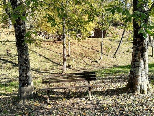 Una panchina in legno nel Bosco Romagno