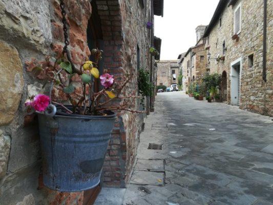 Vaso di fiori in un vicolo di Barberino Val Elsa