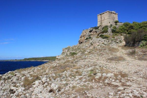 Torre dell'Alto Parco Naturale di Porto Selvaggio