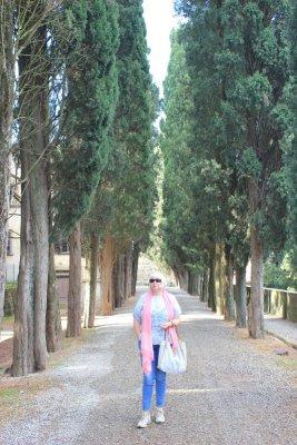Viale di ingresso della Badia a Passignano