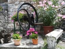 Dettagli nel cortile dell'osmiza Rebula a Slivia Trieste