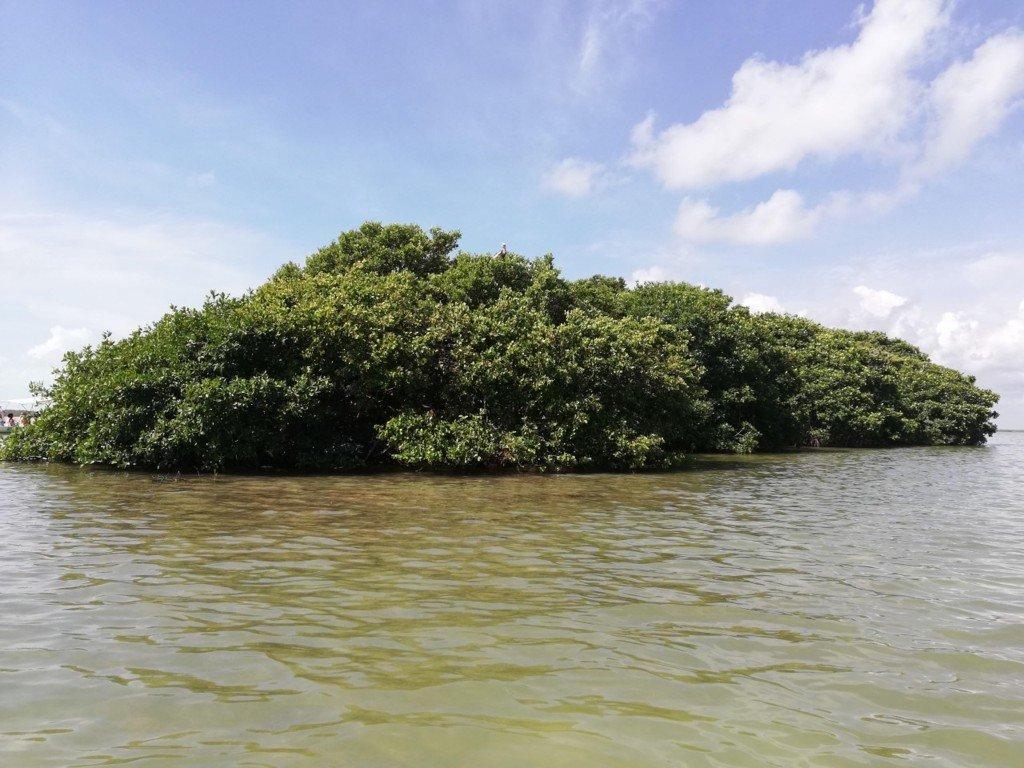 Biosfera Marina di Sian Kaan