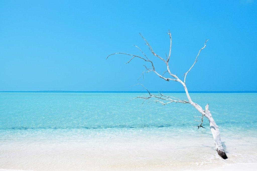 Quando andare in Nuova Caledonia