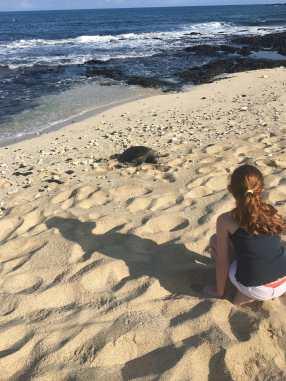 Just Checked Out: Four Seasons Hualalai, Big Island