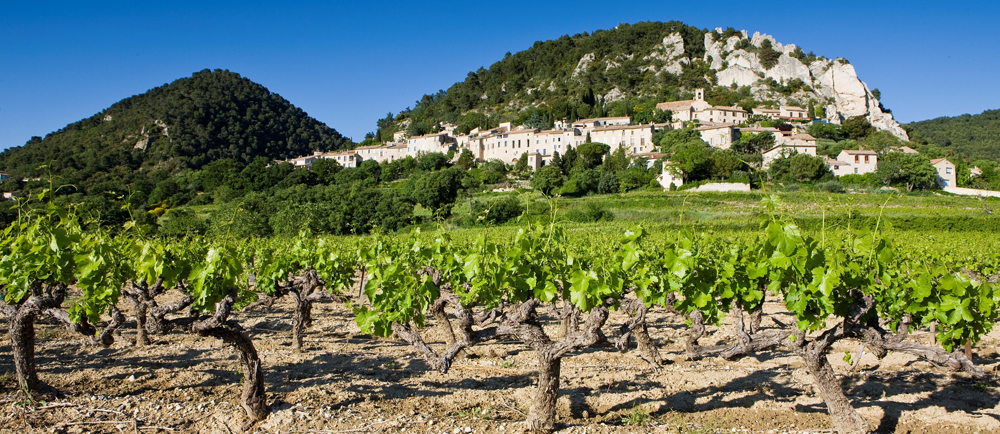 Cotes du Rhone Villages Seguret /