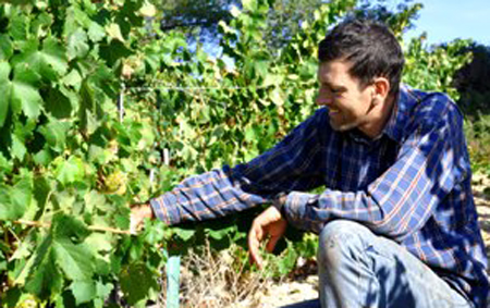 Marc%20Cabrol%20winemaker%20_0