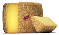fromage_salers_gr