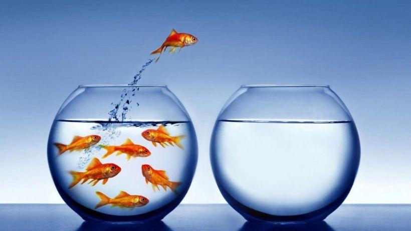 cómo invertir a largo plazo te cambia la vida