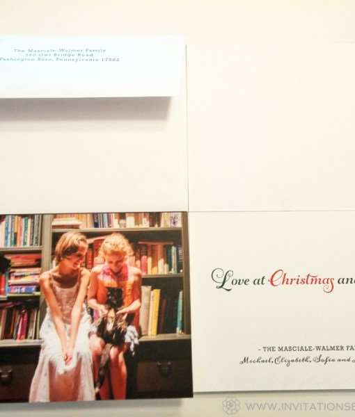 Family Christmas Card | two children, a cat