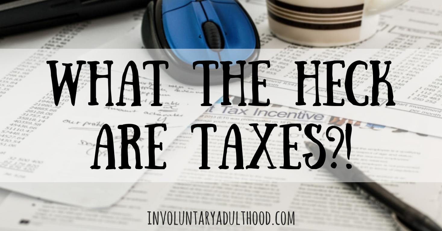 What the Heck are Taxes?!